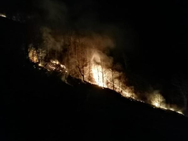 Tokat'ta orman yangını çıktı! 7 saatte söndürüldü, 50 dönüm alan kül oldu