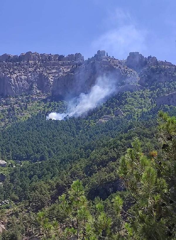 Son dakika... Adana Feke'de orman yangını