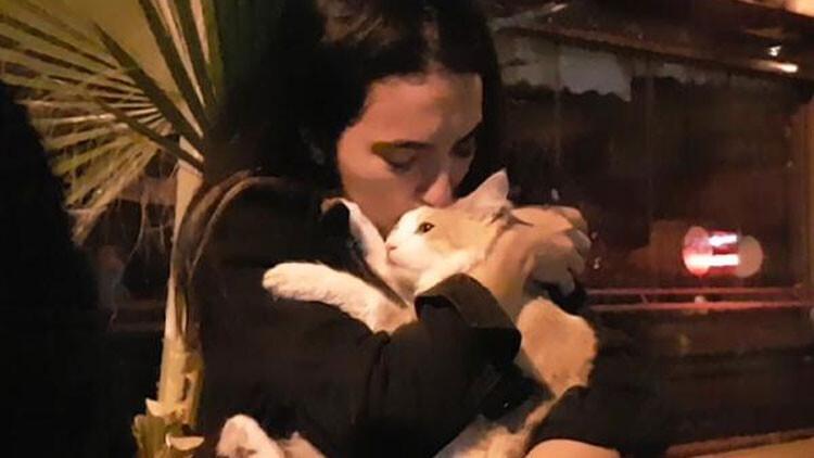 5bcee65167b0a816d474de20 - 6'ncı kattan düşen kedisine kavuşunca gözyaşı döktü