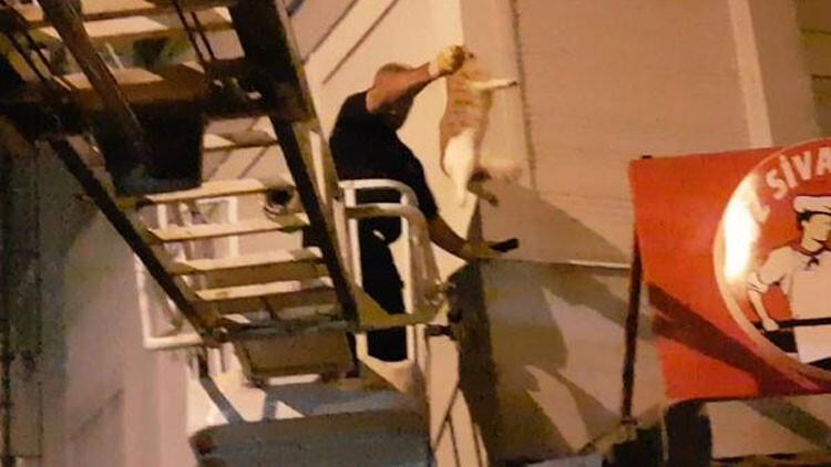 5bcee66067b0a816d474de22 - 6'ncı kattan düşen kedisine kavuşunca gözyaşı döktü