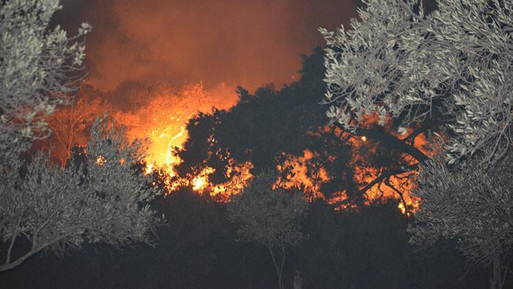 Ayvalık'ta korkutan yangın! Ekipler bölgeye sevk edildi
