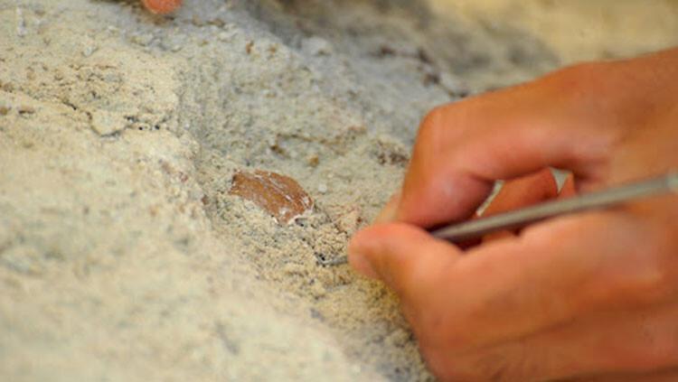 Bursa'da tarihi baştan yazdıracak keşif! Binlerce yıl öncesinin Mustafakemalpaşa tatlısı...